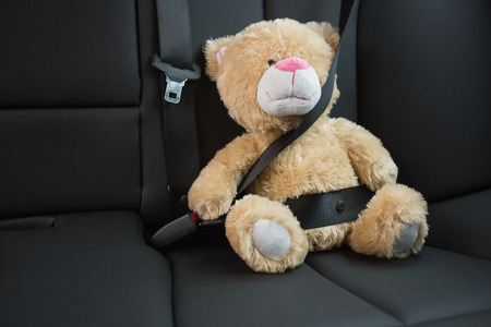 teddy bear: Teddy bear strapped in with seat belt in back seat of car Stock Photo