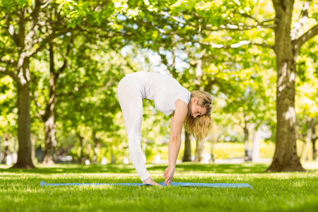 touching toes: Peaceful blonde doing yoga in the park on a sunny day