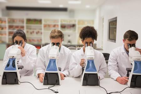 estudiantes medicina: Los estudiantes de medicina que trabajan con el microscopio en la universidad Foto de archivo