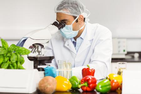 bata de laboratorio: Cient�fico de alimentos usando el microscopio en la universidad Foto de archivo