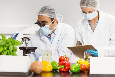 investigador cientifico: Los cient�ficos de alimentos utilizando el microscopio para la investigaci�n en la universidad Foto de archivo