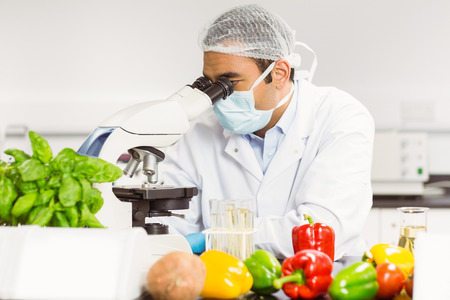 scientist: Food scientist using the microscope at the university