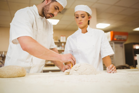teaching adult: Team of bakers preparing dough in a commercial kitchen