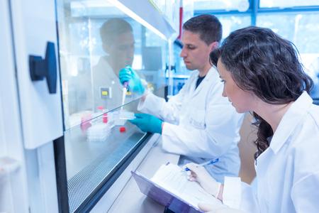 laboratorio: Estudiantes de la ciencia que usa la pipeta en el laboratorio de la universidad