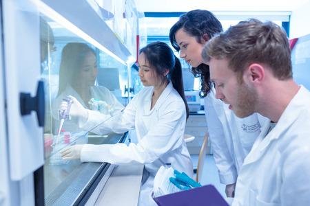 bata de laboratorio: Estudiantes de la ciencia que usa la pipeta en el laboratorio de la universidad