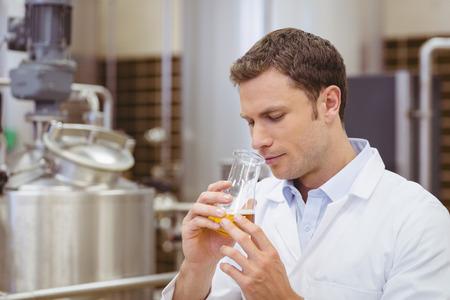 brewer: Cervecero Focused oliendo vaso con cerveza en la f�brica