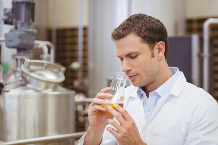 Focused brewer smelling beaker with beer in the factory Stock Photo