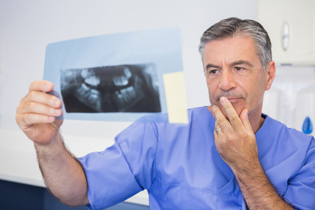 attentively: Thoughtful dentist studying x-ray attentively in dental clinic