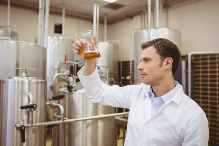 microbrewery: Focused brewer examining beaker with beer in the factory