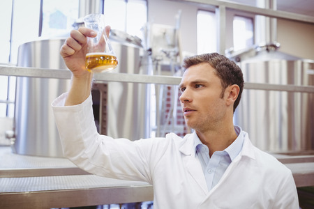 microbrewery: Focused scientist examining beaker with beer in the factory Stock Photo