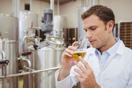 food factory: Focused brewer smelling beaker with beer in the factory Stock Photo
