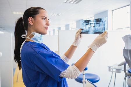 dental nurse: Serious dentist examining a x-ray in dental clinic