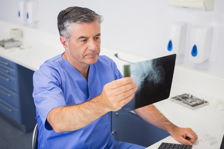 attentively: Dentist studying x-ray attentively in dental clinic