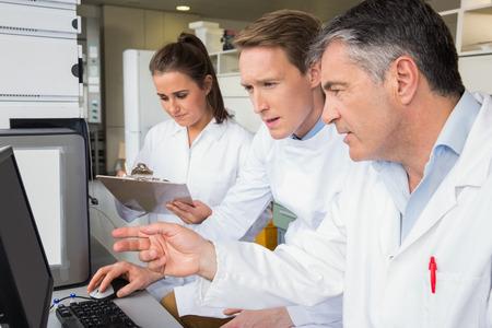 scientists: Equipo de científicos que trabajan juntos en el laboratorio