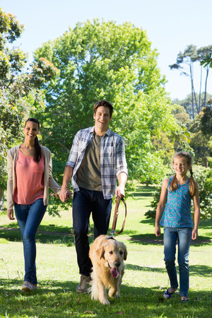 one mid adult man: Happy family walking their dog in the park on a sunny day Stock Photo