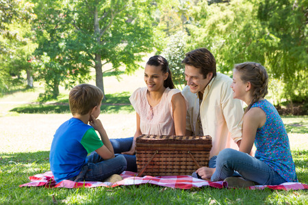 family picnic: Happy family on a picnic in the park on a sunny day