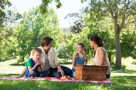 picnic blanket: Happy family on a picnic in the park on a sunny day