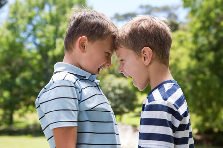 sibling: Little boys having a fight on a sunny day Stock Photo