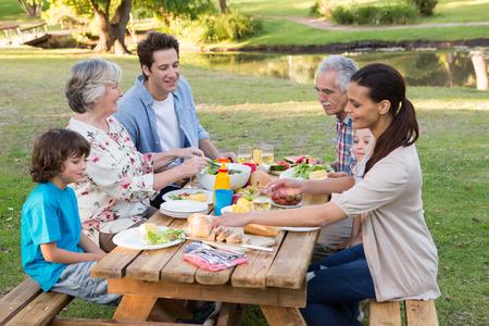 Familia extensa que tiene un almuerzo al aire libre en un día soleado
