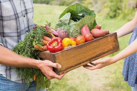 dia soleado: Granjero caja de verduras dando a los clientes en un día soleado