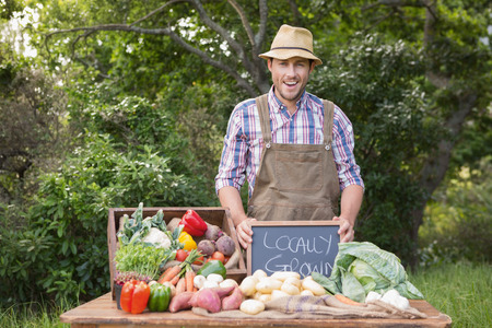market stall: Happy farmer showing his produce on a sunny day