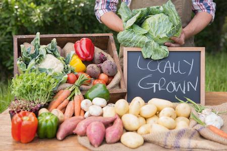 agricultor: Granjero vender verduras org�nicos en el mercado en un d�a soleado
