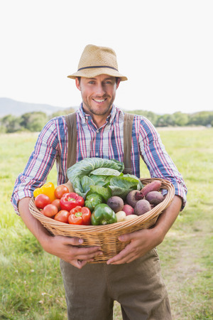 basket: Farmer carrying box of veg on a sunny day Stock Photo