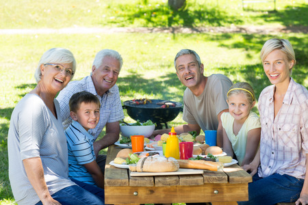 familia picnic: Happy family having picnic in the park on a sunny day