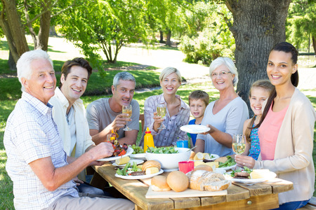 family and friends: Happy family having picnic in the park on a sunny day