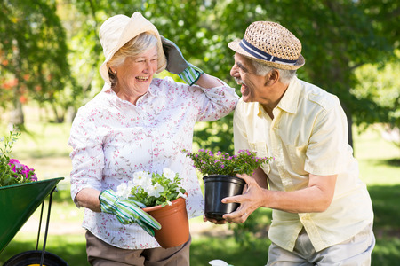 Happy senior couple gardening on a sunny day