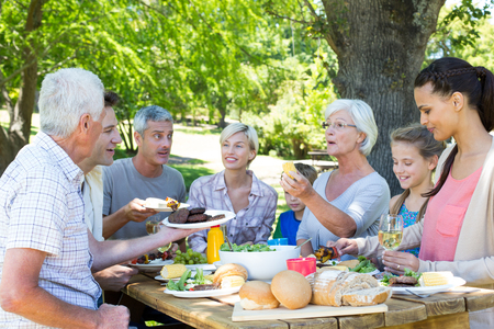 family picnic: Happy family having picnic in the park on a sunny day