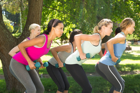 hand weights: Fitness group lifting hand weights in park on a sunny day