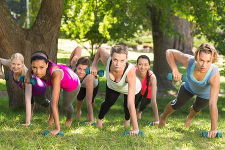 gimnasio mujeres: Planking grupo de la aptitud en el parque en un d�a soleado Foto de archivo