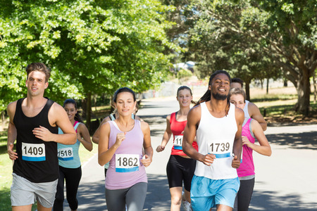Fit people running race in park on a sunny day Stock Photo