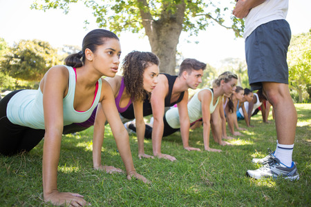 Fitness group planking in park on a sunny day photo
