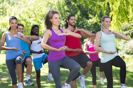 mujeres fitness: Grupo de la aptitud haciendo tai chi en el parque en un d�a soleado