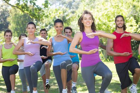 gruppe m�nner: Fitness-Gruppe zu tun Tai Chi im Park an einem sonnigen Tag Lizenzfreie Bilder