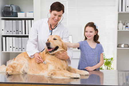 its: Smiling vet examining a dog with its owner in medical office