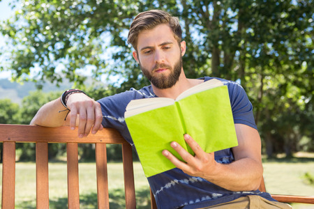 summers: Young man reading on park bench on a summers day