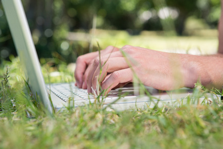 summers: Man using laptop in the park on a summers day