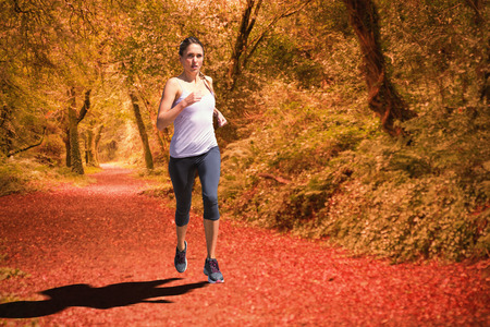 Focused fit blonde jogging  against peaceful autumn scene in forest Stock Photo