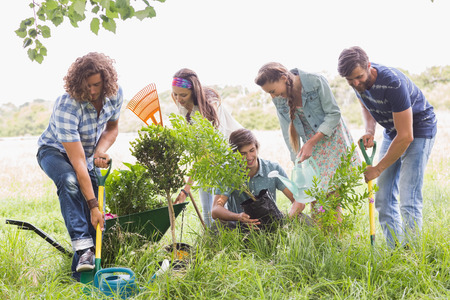 selfless: Happy friends gardening for the community on a sunny day
