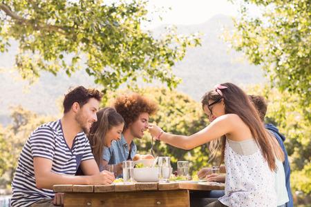 amigos: Amigos felices en el parque de almorzar en un día soleado