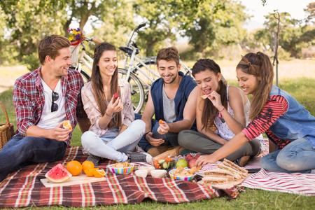 comiendo: Amigos felices en el parque que tiene comida campestre en un d�a soleado