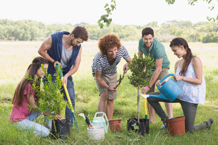 rural community: Happy friends gardening for the community on a sunny day