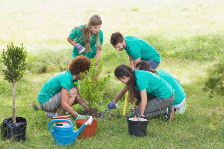 Amis heureux jardinage pour la communauté sur une journée ensoleillée