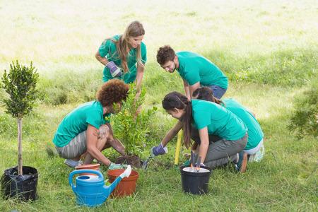 Gelukkige vrienden tuinieren voor de gemeenschap op een zonnige dag Stockfoto