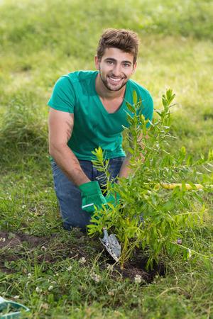 plantando arbol: Hombre joven feliz jardinería para la comunidad en un día soleado