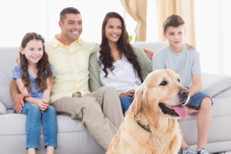 Happy family and dog watching TV together in living room Stock Photo