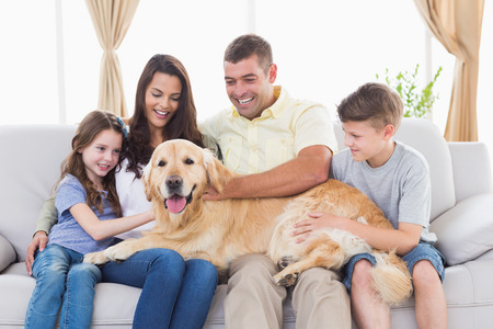 two stroke: Happy family of four stroking Golden Retriever in living room